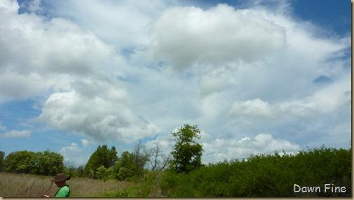 Clouds near Cassins Sp_003