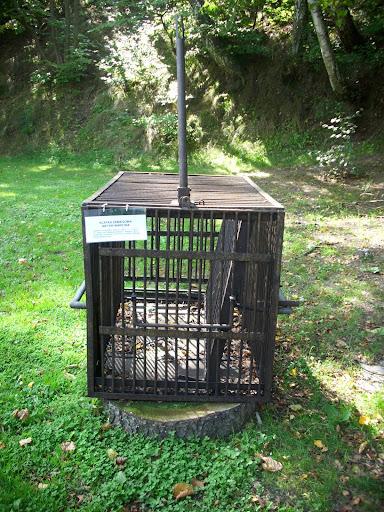 Klatka zabiegowa - wystawa maszyn rolniczych w oliwskim zoo
