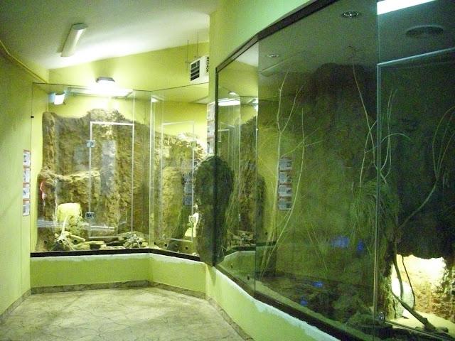 Pawilon Sahary - wnętrze