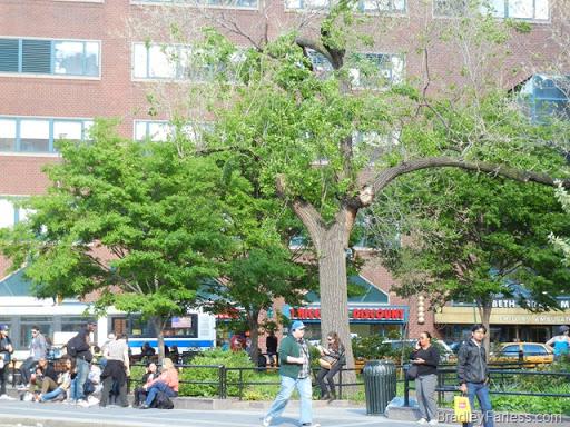 Union Square Park, facing the Beth Israel Phillips Ambulatory Care Center.