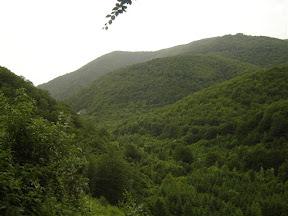 Brda iznad Ruplja