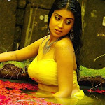 Hot & Spicy Telugu actress photos, videos & movies   Updated Daily   part 4