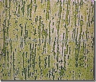 Foto de texturas de parede