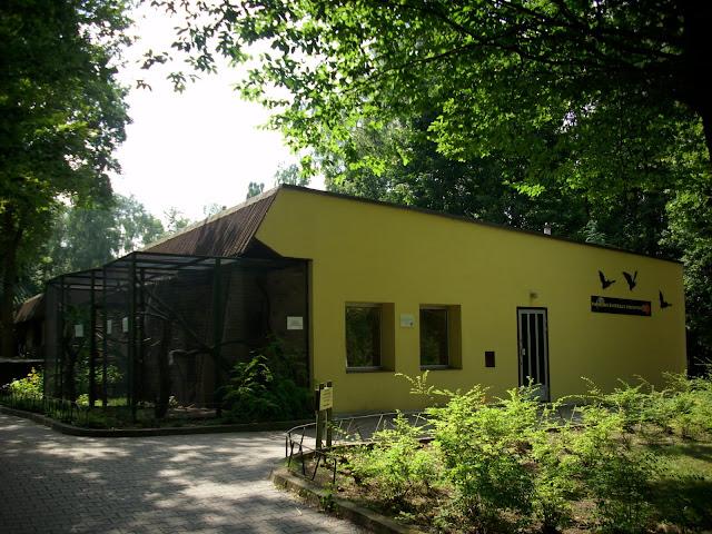 Pawilon zwierząt nocnych - Nowe Zoo Poznań (fotografia zrobiona w... licpu:)