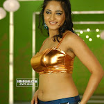 Tamil actress hot gallery