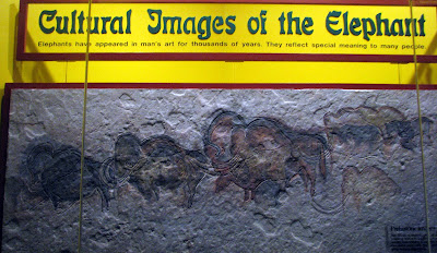 Cultural images of elephants