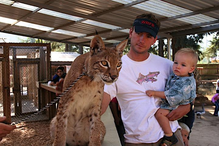 Owen gets to know a Siberian Lynx kitten