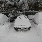 You can see how much snow I moved digging out Kelly's car.  See the other cars for comparison.