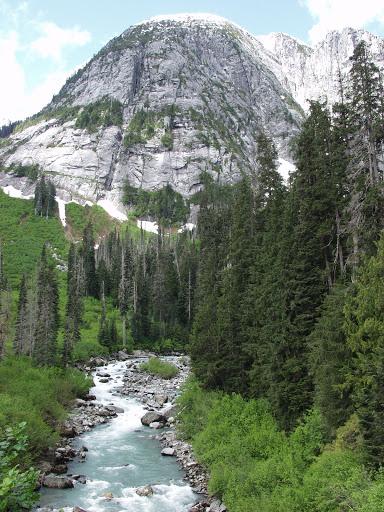 Sims Creek, Elaho Valley