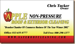 Roof Tampa Cleaning