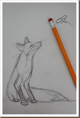 fox rough draft