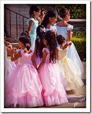 DSC_0531-wedding-party