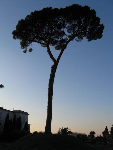 Sunset at Pallatine Hill