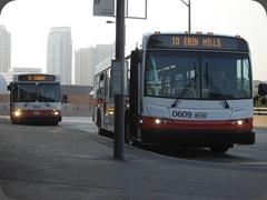 Miss bus