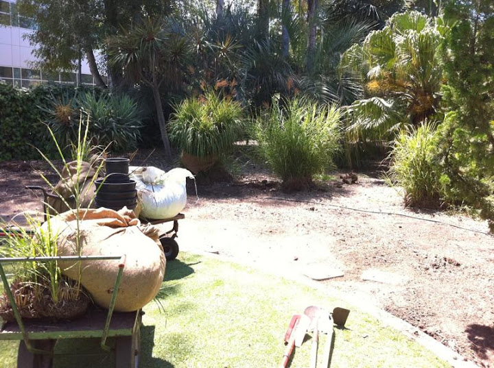 OCC Horticulture Club Department Relandscape