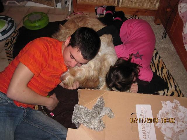 il ne faut jamais laisser un chien seul avec des enfants sinon le blog d 39 isae. Black Bedroom Furniture Sets. Home Design Ideas