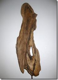 Driftwood backside 10 Dec