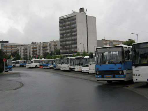 Veszprém, buszpályaudvar, MAN, Ikarus, Credo, Mercedes, Volvo, autobus, bus, buszok