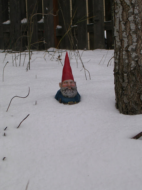 Image result for gnome snow