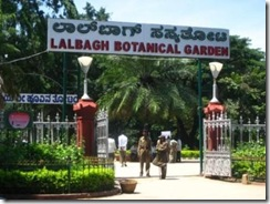 botanical-garden-bangalore-india S