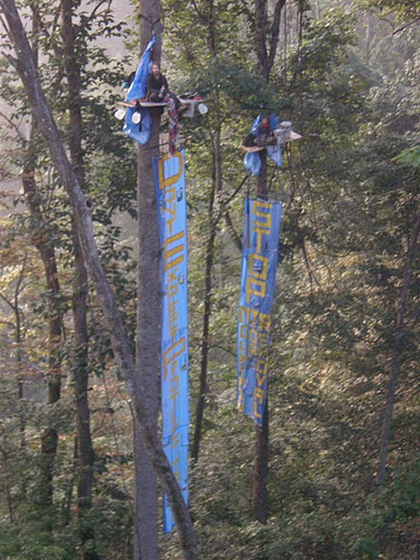 Climate Ground Zero activists in a tree sit in August 2009