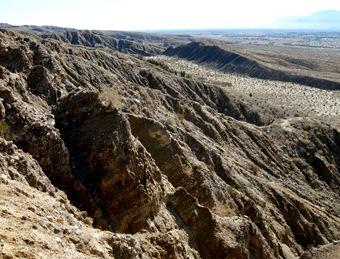 thousand palms canyon (15)