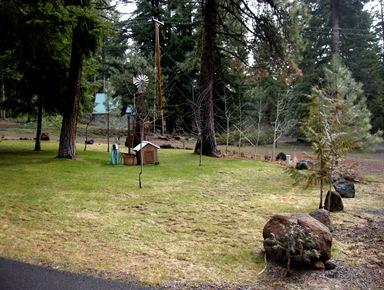 April yard Rocky Point (5)
