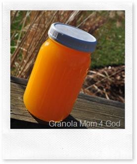 Orange Juice 483