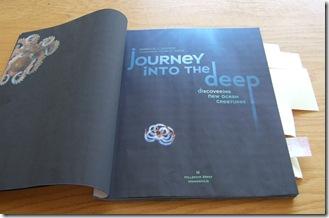 Journey 43-1
