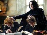 Harry Potter et la coupe de feu (Mike Newell)