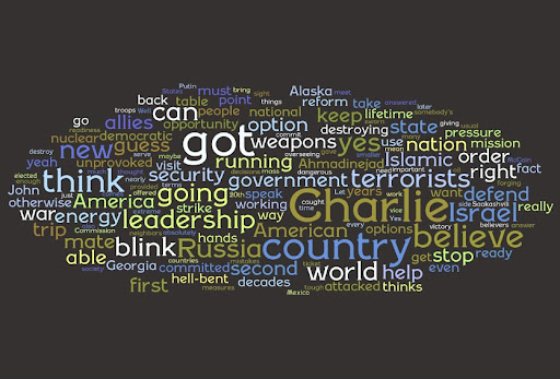 Wordle - Palin 1.jpg