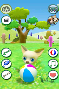 Talking Chihuahua Free screenshot 1