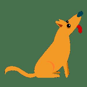 Dog Teaser Free
