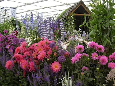 Flowers at Hampton Court