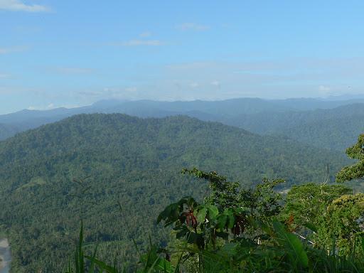 Buffer Area La Amistad National Park Panama