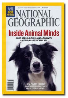 national_geographic_animal.jpg