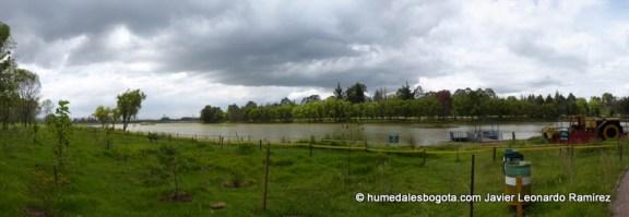 Humedal La Florida Bogotá