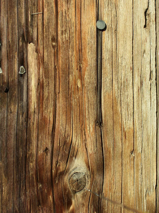 textura madeira e prego download