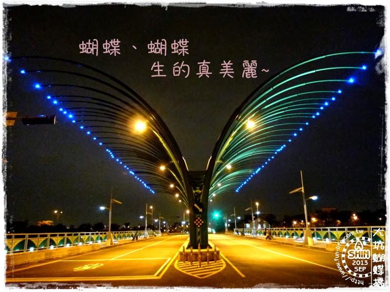 大坑蝴蝶橋~夜晚空中的華麗飛舞,想看要來對時間