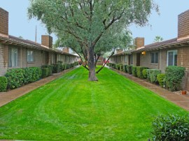 Front yard maintenance is included for Condos for Sale in Tempe AZ