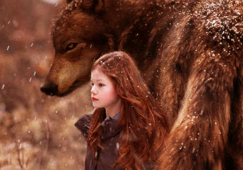 Protecting Girl Black Drawing Wolf