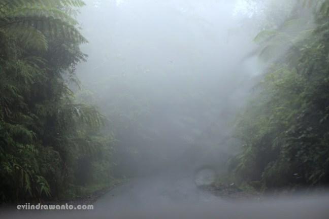 jalan di atas gunung