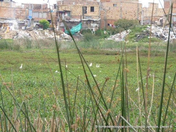 Barrio UNIR segundo sector - Humedal Jaboque