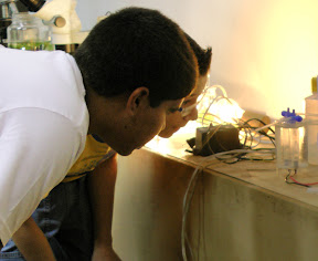 Igor e Arthur observam curiosos o experimento de eletrólise aquosa