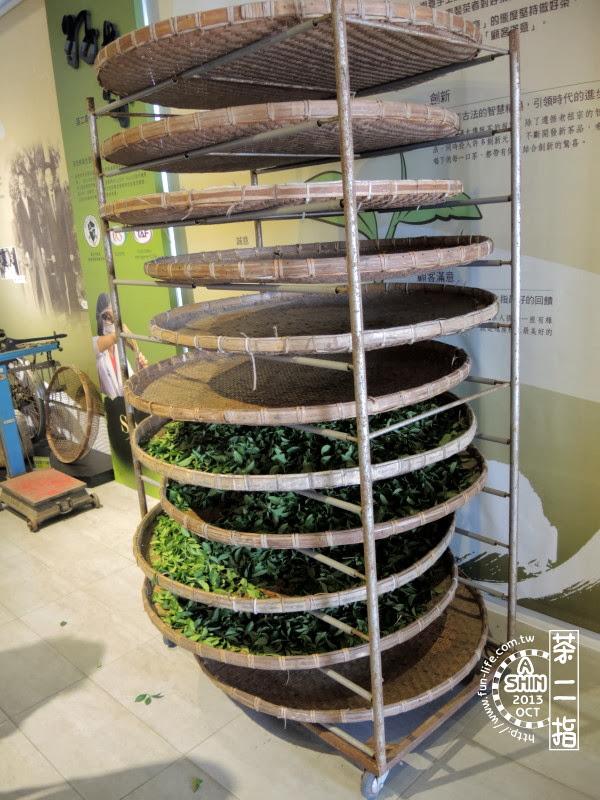 茶葉在室內萎凋模擬,茶葉是真的-茶二指
