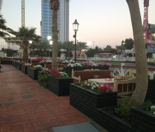 Here Is Another Restaurant The Flowers Are Just So Lovely This Was Taken In January Which Is Jeddahs Spring Type Season As The Temperature Is Around