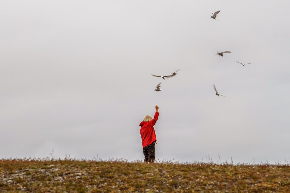 Some people raised their hand up to shoo the birds off