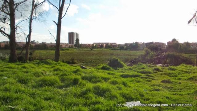 El humedal visto desde el barrio UNIR2