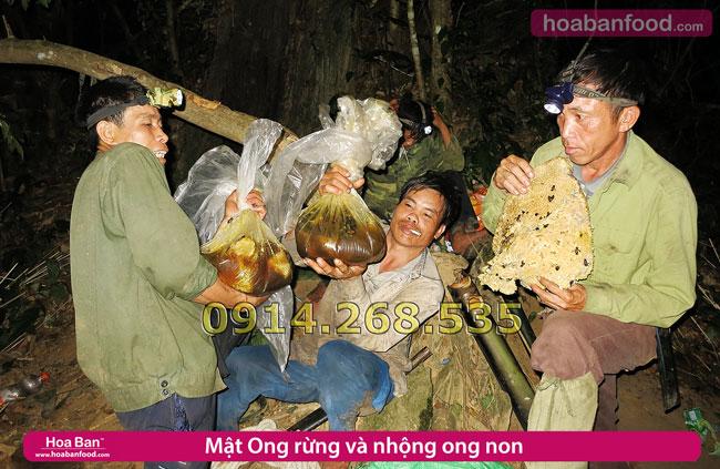 Săn Mật Ong Rừng Tây Bắc - 2014 - 7