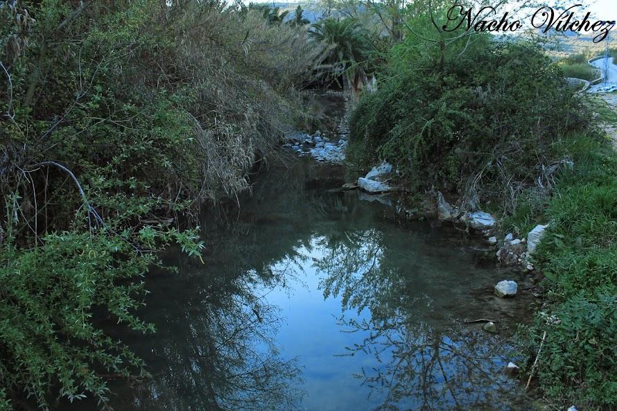 Embalse y río Colomera 06.04.14 (3/6)